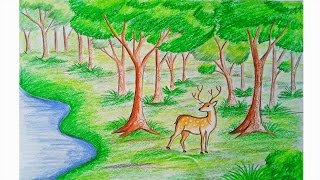 Download How to draw forest scene Step by step (very easy) Video