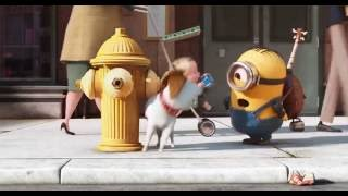 Download MINIONS MOST FUNNY MOMENTS 2016 (HD) Video