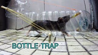 Download plastic bottle mouse trap (패트병 쥐덫) Video