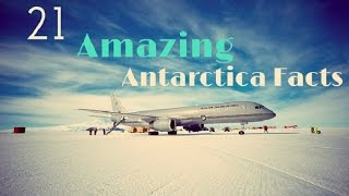 Download Antarctica Facts: 21 Amazing Facts About Antarctica Video
