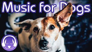 Download Music to Soothe Your Dog - 15 Hours of Relaxing Dog Therapy Music! Video