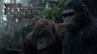 Download War for the Planet of the Apes | Extended Preview | 20th Century FOX Video
