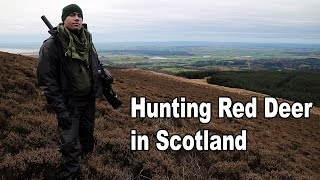 Download Hunting red deer in Scotland Video
