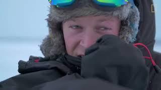 Download Male Polar Bear Fight Club - Ep. 2 | Wildlife: The Big Freeze Video