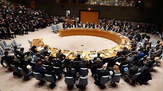 Download Reunión del Consejo de Seguridad de la ONU sobre la situación en Palestina Video