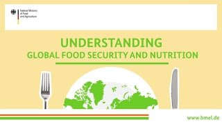 Download ″Understanding global food security and nutrition″ Video