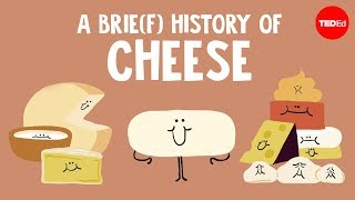 Download A brie(f) history of cheese - Paul Kindstedt Video
