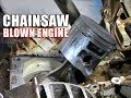 Download Why A Chainsaw Engine Blew Up! Stihl MS441 Video