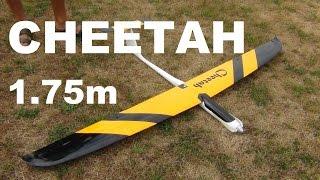 Download Staufenbiel Cheetah RC glider Video