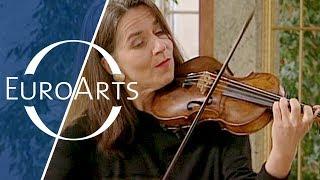 Download Bach: Brandenburg Concerto No. 3 in G major, BWV 1048 (Freiburger Barockorchester) Video