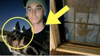 Download The Day After A Stray Cat Followed This Man Home, He Got A Visit He Never Saw Coming Video