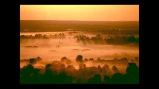 Download Rachmaninov - Symphony No. 2 Op. 27 III. Adagio: Adagio (LSO) Video
