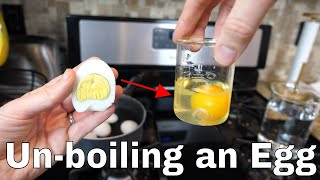 Download Is it Possible to Unboil an Egg? The Amazing Uncooking Experiment! Video