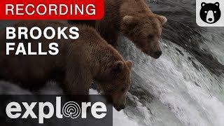 Download Brooks Falls - Katmai National Park, Alaska powered by EXPLORE.org Video
