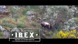 Download Bowhunting Spain for Ibex Video