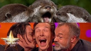 Download Benedict Cumberbatch, Johnny Depp and Graham Take Otter Photos - The Graham Norton Show Video