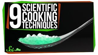 Download 9 Scientific Cooking Techniques Video