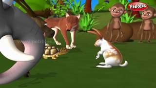 Download Moral Stories in Hindi For Children | हिंदी नैतिक कहानियाँ | Hindi Animal Stories Collection Kids Video