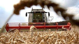 Download Bauer sucht Zukunft - Eine ökologischere Landwirtschaft ist machbar Video