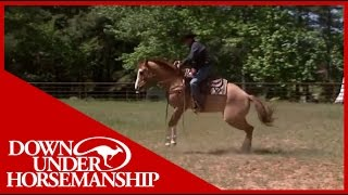 Download Clinton Anderson Presents: Soxie under Saddle Video