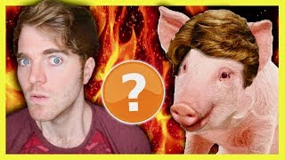 Download SHANE DAWSON IS A PIG? - CONSPIRACY THEORY Video