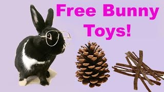 Download DIY FREE rabbit chew toys! Video