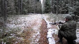 Download Охота на кабана Video