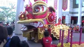 Download Singapore's biggest ever lion dance 150111 Video