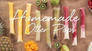 Download DIY Fresh Fruit Otter Pops | Eat the Trend Video
