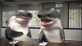 Download Top Funniest Commercials Ever Compilation 2017 Best Funny Banned Commercial - Funny TV Ads Video
