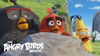 Download THE ANGRY BIRDS MOVIE - Official Theatrical Trailer (HD) Video