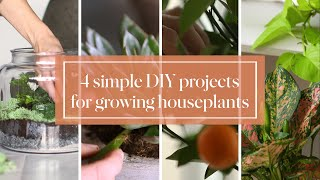 Download 4 Simple DIY Projects for Growing Houseplants- Martha Stewart Video