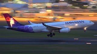 Download STUNNING Heavy Aircraft Night Flights   Sydney Airport Plane Spotting Video