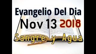 Download Evangelio del Dia- Martes 13 Noviembre 2018- Santidad En la Vida Cotidiana- Sangre y Agua Video