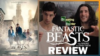 Download Fantastic Beasts and Where to Find Them Review (Spoiler Free) Video