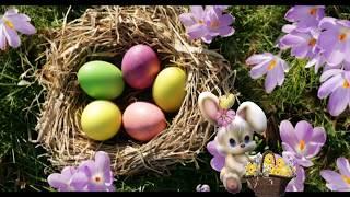 Download Ostergrüsse - Frohe Ostern Video