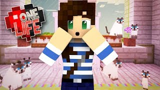 Download HELP! I Can't Stop Breeding Cats In Minecraft - One Life SMP (Ep.12) Video