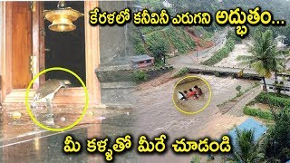 Download Tortoise Saves KERALA People in Rains | Miracles in KERALA Rains | Tollywood Nagar Video