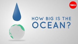 Download How big is the ocean? - Scott Gass Video