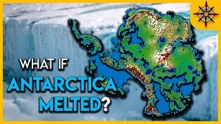 Download What if Antarctica MELTED? Video