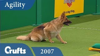 Download ABC Agility Final from Crufts 2007 | Crufts Classics Video