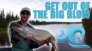 Download The Quiet Cove Trick! When Stormy Winds Force You Off Proven Spots, Try THIS! Video