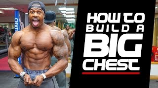 Download HOW TO BUILD A BIG CHEST | Simeon Panda Video