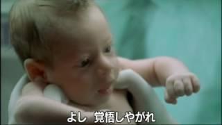Download 『赤ちゃんの逆襲』 予告編 Video