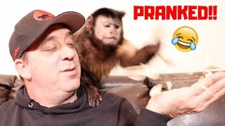 Download Monkey Reacts to FREEZE DRIED Mushrooms! (PRANK) Video