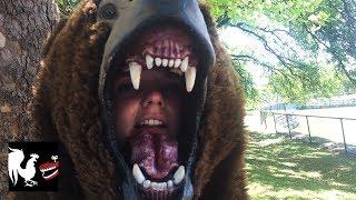 Download Bear Dance Video