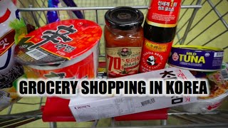 Download Grocery Shopping in Rural Korea Video
