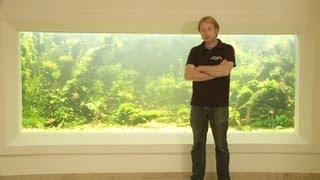 Download ANIMALISCH die Tiersendung Nr.09 10`000 Liter Aquarium mit Andi Hofstetter Video