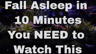 Download THE BEST Sleep Aid Video: The Insomnia Key (fall asleep fast) Video
