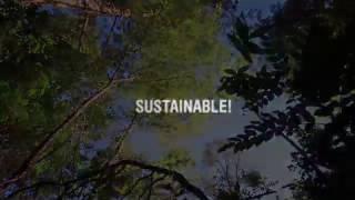 Download روز بینالمللی جنگل (2015) Video